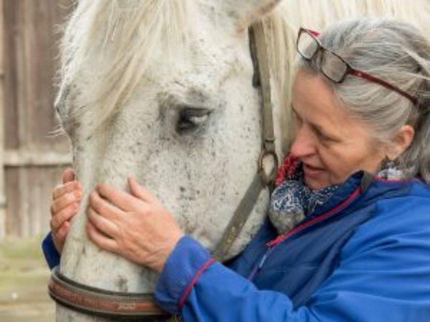 Die Pferdeosteopathin