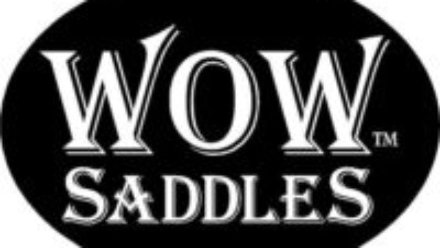 12 gut Gründe für WOW Saddles
