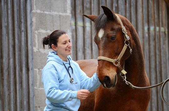 Mag. Nina Lux – ganzheitliche Tiermedizin